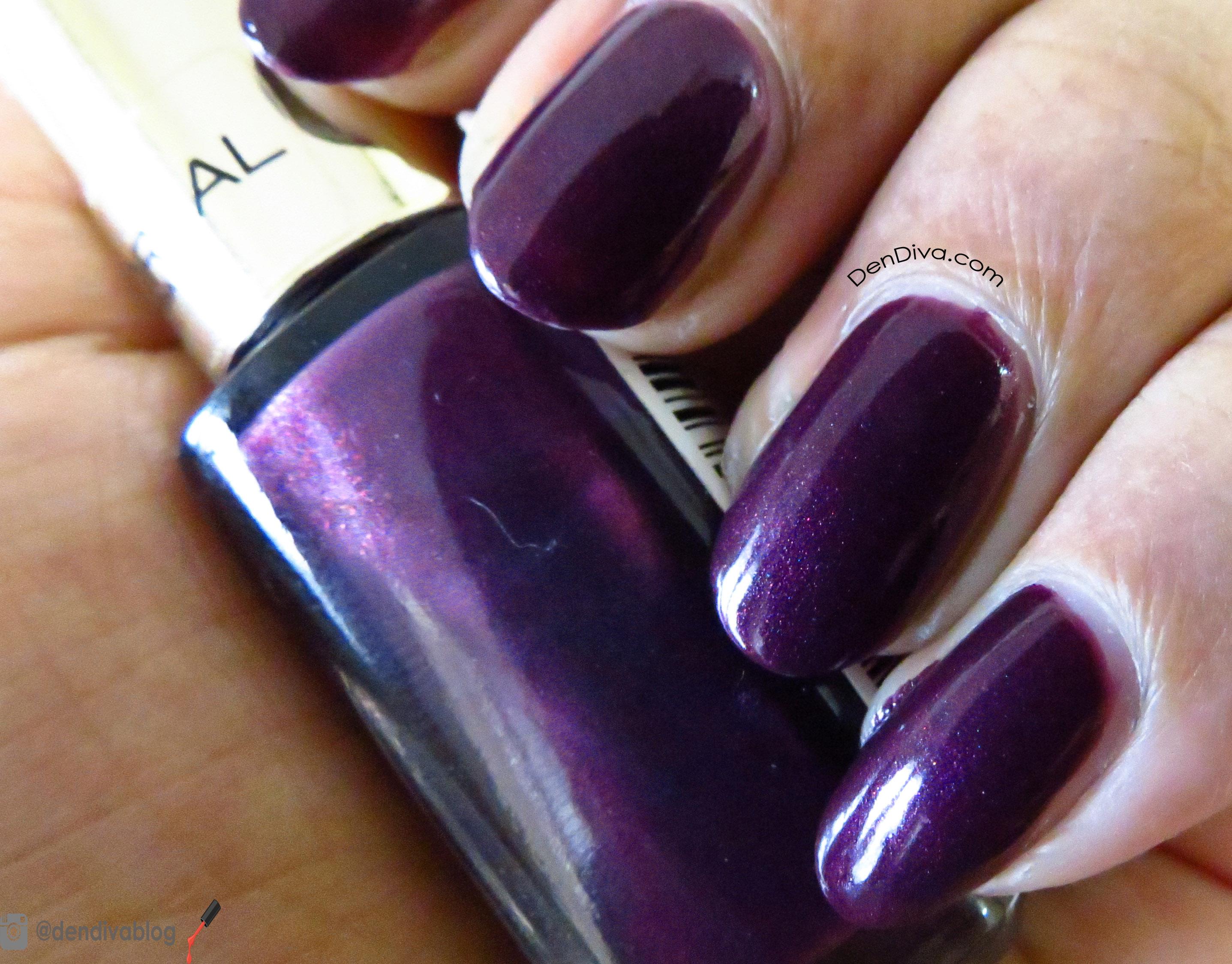 L\'Oreal Paris Color Riche Nail Enamel Wild Purple Swatch & Review ...